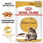 Royal Canin Breed Maine Coon Adult w sosie