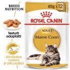 Royal Canin Breed Maine Coon Hrană umedă