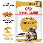 Royal Canin Breed Maine Coon nedvestáp
