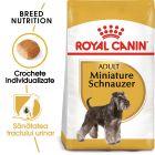 Royal Canin Breed Miniature Schnauzer Adult Hrană uscată