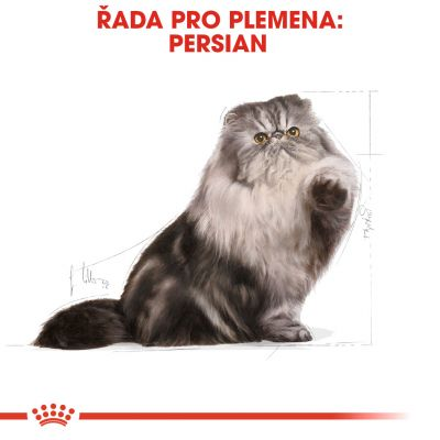 Royal Canin Breed Persian Adult