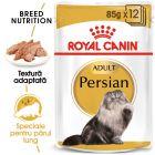 Royal Canin Breed Persian Hrană umedă