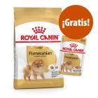 Royal Canin Breed pienso + comida húmeda ¡gratis!