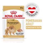 Royal Canin Breed Pomeranian für Zwergspitze