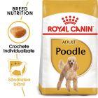 Royal Canin Breed Poodle Adult Hrană uscată