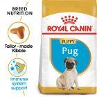 Royal Canin Breed Pug Puppy Hrană uscată