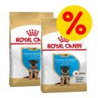 Royal Canin Breed Puppy/ Junior -säästöpakkaus