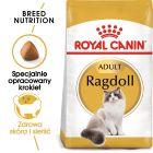 Royal Canin Breed Ragdoll Adult