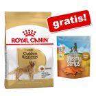 Royal Canin Breed sac mare + Barkoo Meaty Strips cu piept de pui gratis!