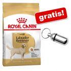 Royal Canin Breed sac mare  + Pandantiv adresă cromat gratis!