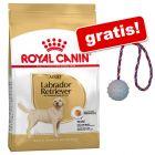 Royal Canin Breed sac mare + Trixie Mingiuță din cauciuc cu șnur gratis!