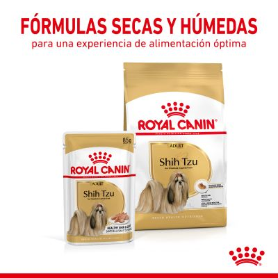 Royal Canin Breed Shih Tzu Adult en sobres
