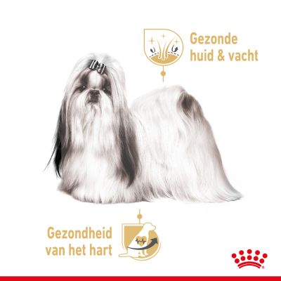 Royal Canin Breed Shih Tzu Adult Hondenvoer