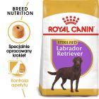 Royal Canin Breed Sterilised Labrador Retriever Adult