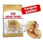Royal Canin Breed -suurpakkaus + naudankorvat kaupan päälle!
