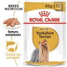 Royal Canin Breed Yorkshire Terrier em saquetas