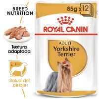 Royal Canin Breed Yorkshire Terrier en sobres