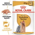 Royal Canin Breed Yorkshire Terrier nedvestáp
