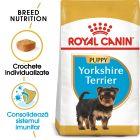 Royal Canin Breed Yorkshire Terrier Puppy Hrană uscată