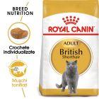 Royal Canin British Shorthair Adult Hrană uscată