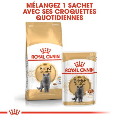 Royal Canin British Shorthair Adult pour chat