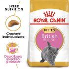 Royal Canin British Shorthair Kitten Hrană uscată