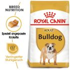 Royal Canin Bulldog Adult pour chien
