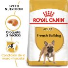 Royal Canin Bulldog Francés Adult