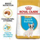 Royal Canin Bulldog Francês Puppy/Junior