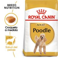 Royal Canin Caniche Adult