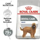 Royal Canin Care Nutrition Maxi Dental Care