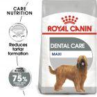 Royal Canin Care Nutrition Maxi Dental Care