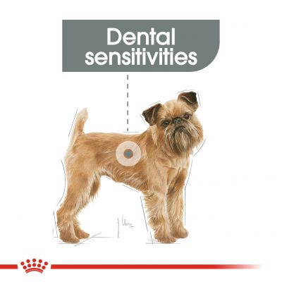 Royal Canin Care Nutrition Mini Dental Care