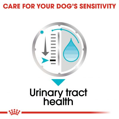 Royal Canin Care Nutrition Wet Urinary Care