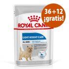 Royal Canin Care Nutrition 48 x 85 g sobres en oferta: 36 + 12 ¡gratis!