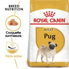 Royal Canin Carlin Adult pour chien