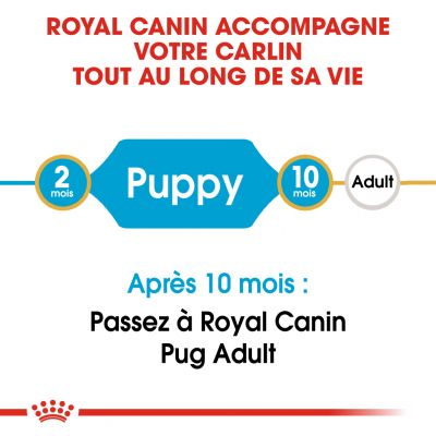 Royal Canin Carlin Puppy pour chiot