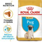 Royal Canin Carlino Puppy