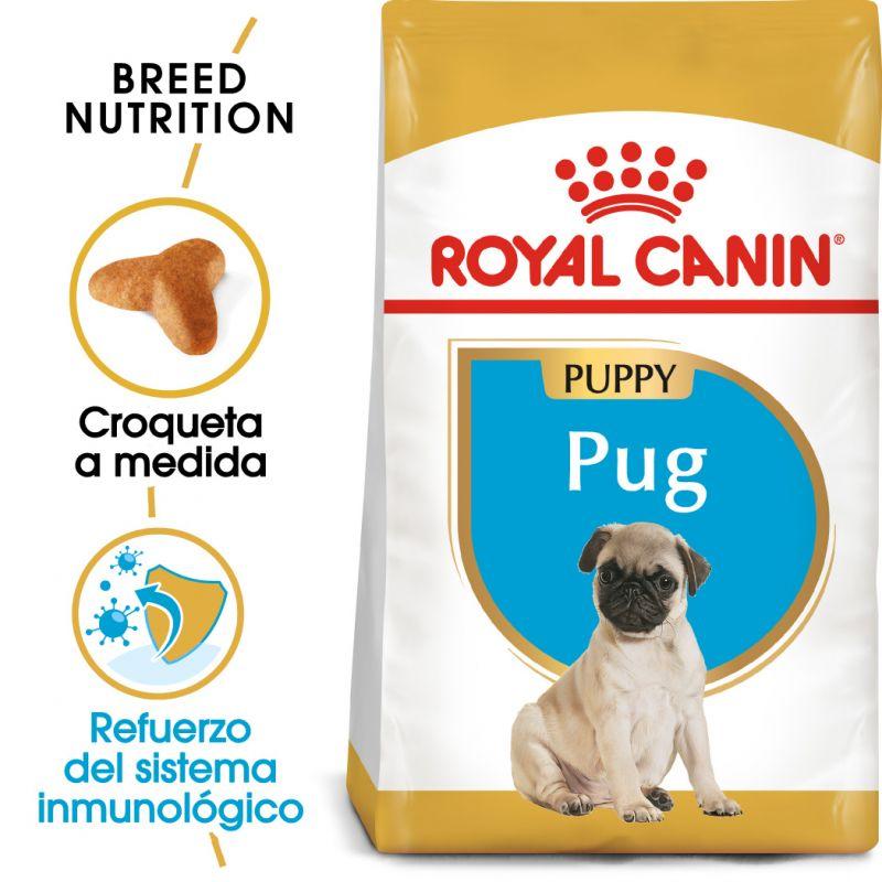 Royal Canin Carlino Puppy