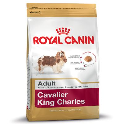 Royal Canin Breed Cavalier King Charles Adult | zooplus.no