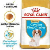 Royal Canin Cavalier King Charles Puppy - Hondenvoer