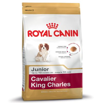 Royal Canin Cavalier King Charles Puppy / Junior