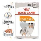Royal Canin CCN Coat Care