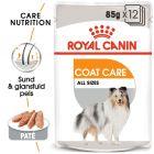 Royal Canin CCN Coat Care Wet