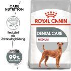 Royal Canin CCN Dental Care Medium