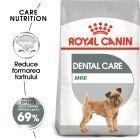 Royal Canin CCN Dental Care Mini Hrană uscată