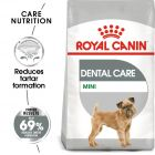 Royal Canin CCN Dental Care Mini Hrană uscată