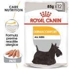 Royal Canin CCN Dermacomfort Wet