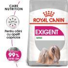 Royal Canin CCN Exigent Mini Hrană uscată
