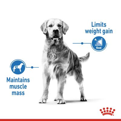 Royal Canin CCN Light Weight Care Maxi Hrană uscată